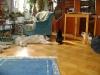 Katz und Hund - Katzenbetreuung Wien